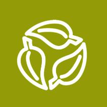 Icona Consumo sostenibile